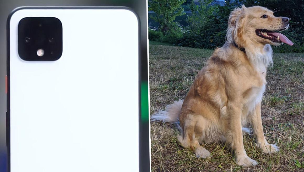 Google Pixel 4 ile çekilen fotoğraflar ortalığı karıştırdı